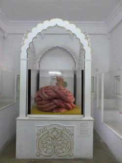 Udaipur (27)